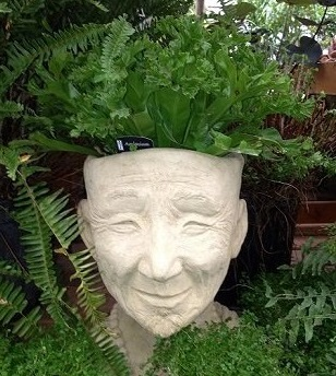Herb Garden Planted in Stone Head Planter
