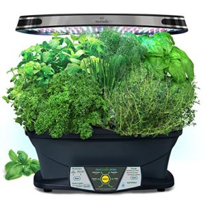The Miracle Gro Aerogarden With Seven Gourmet Seed Pods Available On