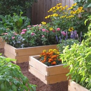 Do You Have An Existing Flower Garden?