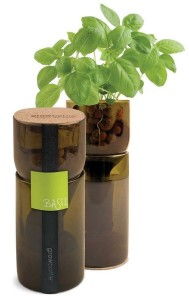 Basil Grow Bottles from Eartheasy