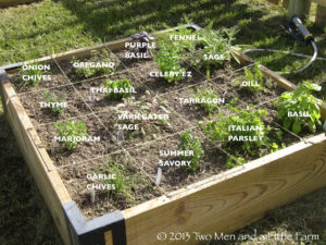 Superb Square Foot Herb Garden
