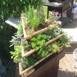 Pyramid Herb Planter