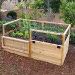 pest proof raised bed