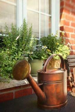 Perfect How To Make A Windowsill Herb Garden