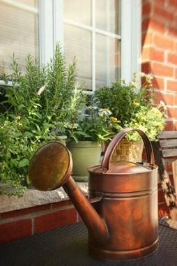 How Make Windowsill Herb Garden Amp Grow Culinary Herbs