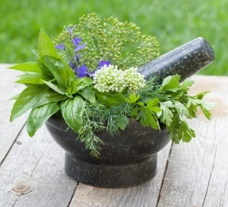 Start a Medicinal Herb Garden with Culinary Herbs