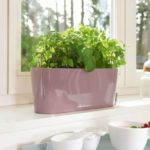 small windowsill planter