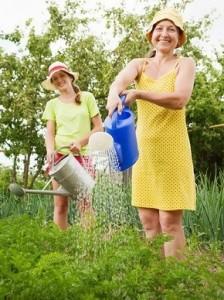 Women watering parsley in garden