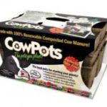 Cow pot Seed Starters
