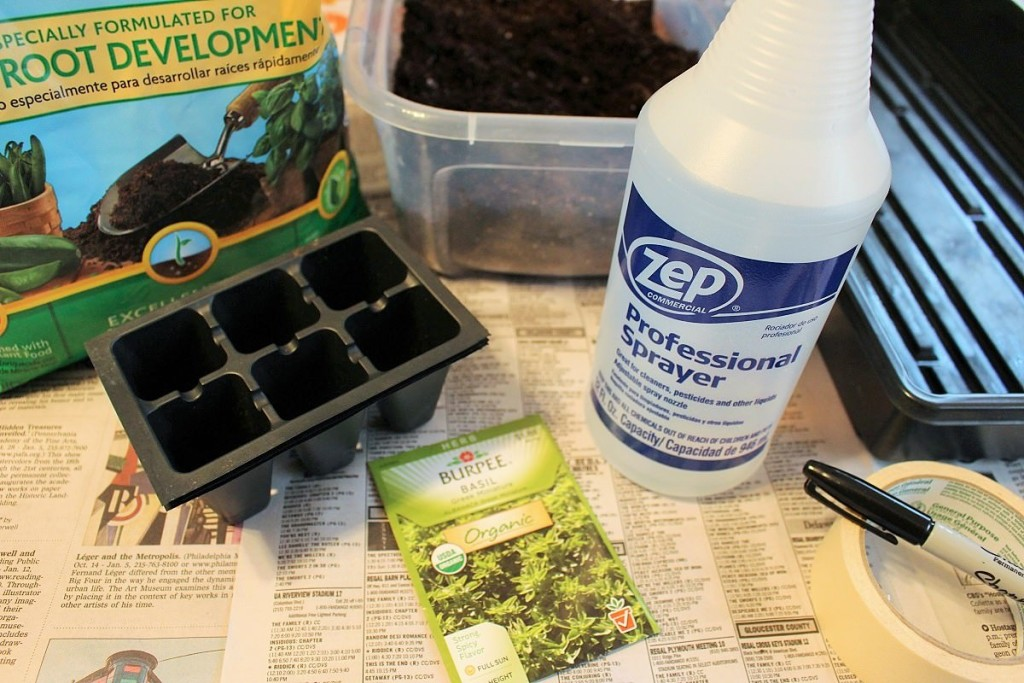 Supplies to grow basil from seed