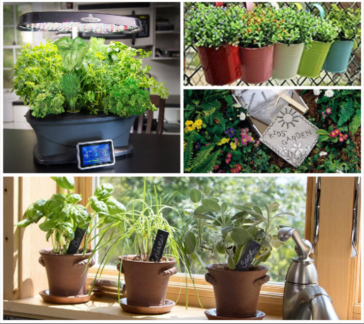 20 Great Herb Garden Ideas: 7 Fun Gardening Gift Ideas
