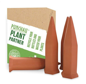 terracotta-plant-spike