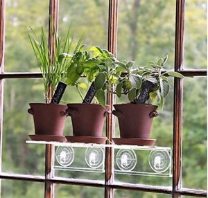 Rustic herb garden kit on a windowsill suction cup shelf