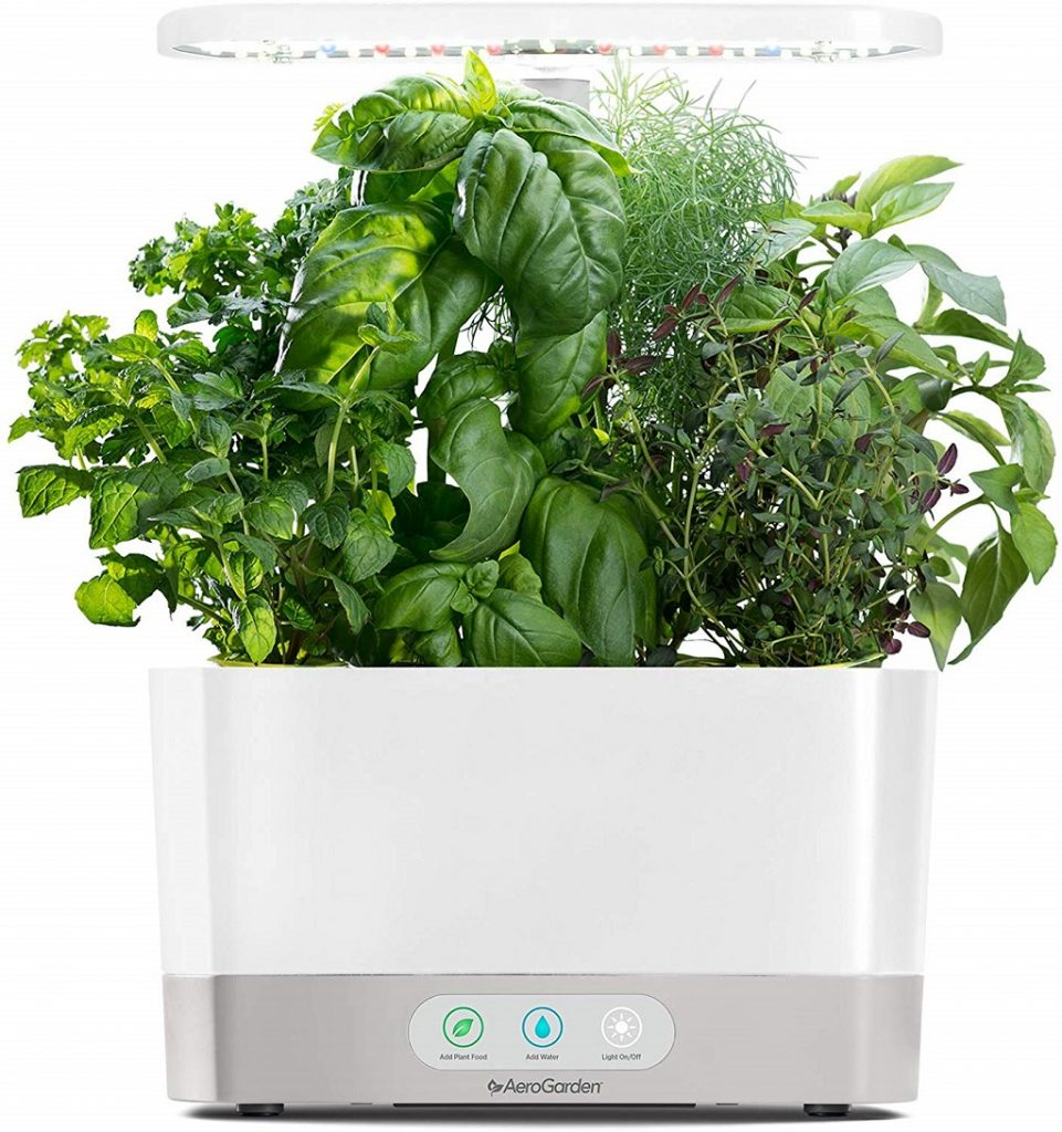 The Aerogarden filled with herbs