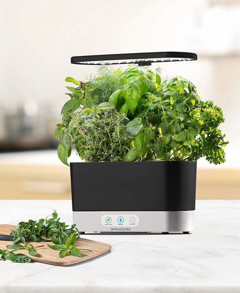 The Aerogarden Harvest with ready to harvest herbs