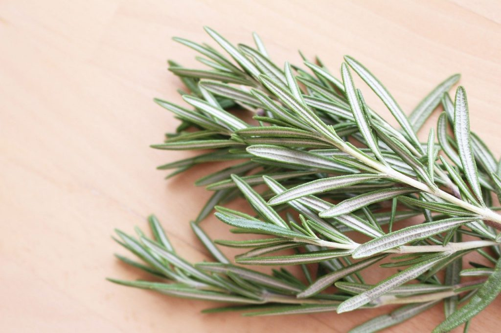 spring of the herb rosemary on a cutting board ready for cooking