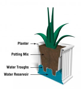 Example of how a self-watering works - diagram by Plow and Hearth.