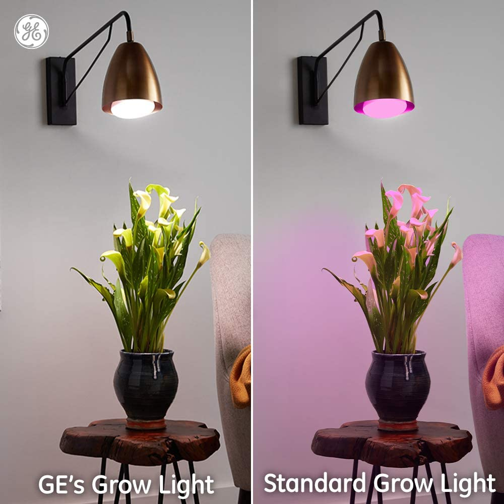 Comparison of GE's Grow light with white light and a Pink standard grow light