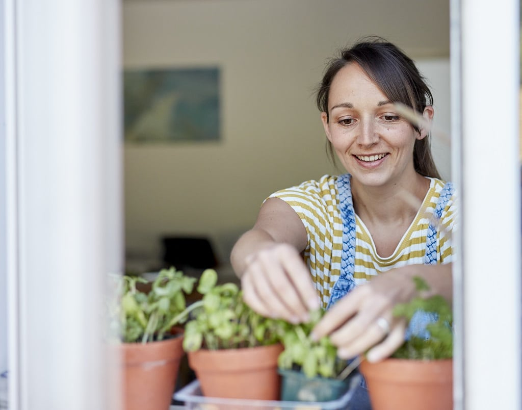 woman picking fresh herbs on the windowsell