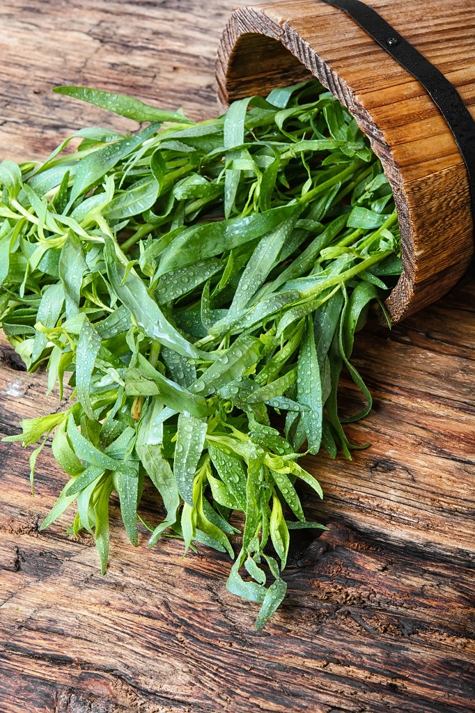 tender tips of french tarragon