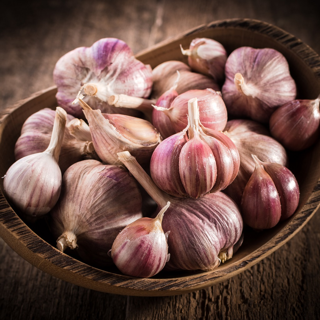 purple striped hardneck garlic