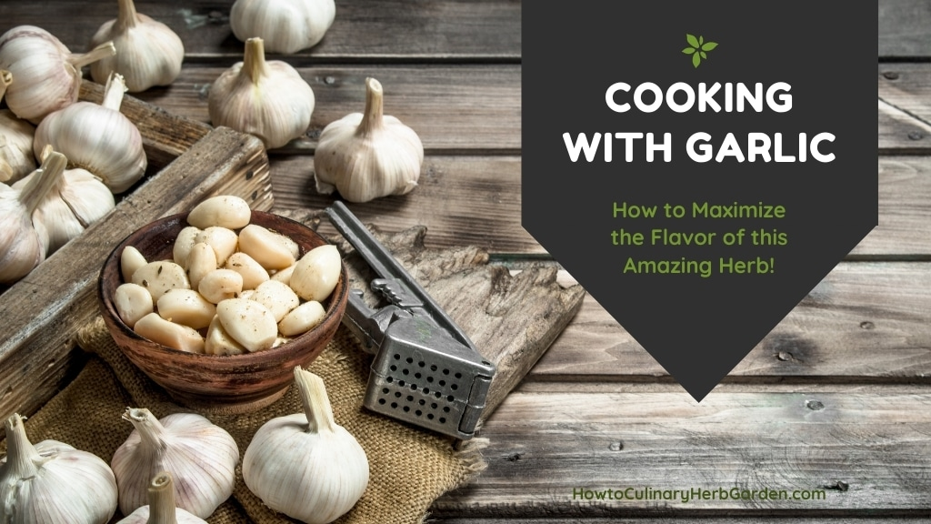 Cooking with Garlic - How to Maximize the flavor of this amazing herb