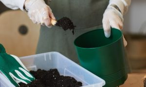 filling green pot with soil