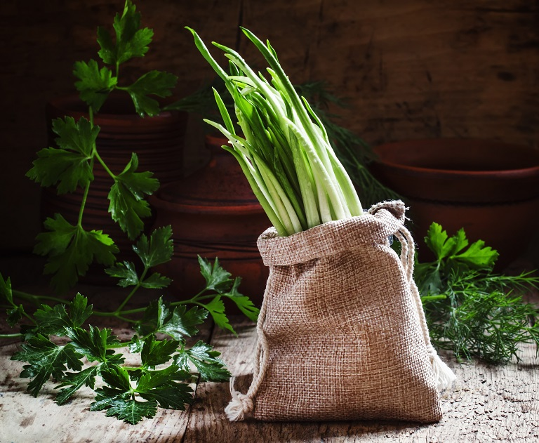 wild garlic with the green shoots growing out of the burlap bag