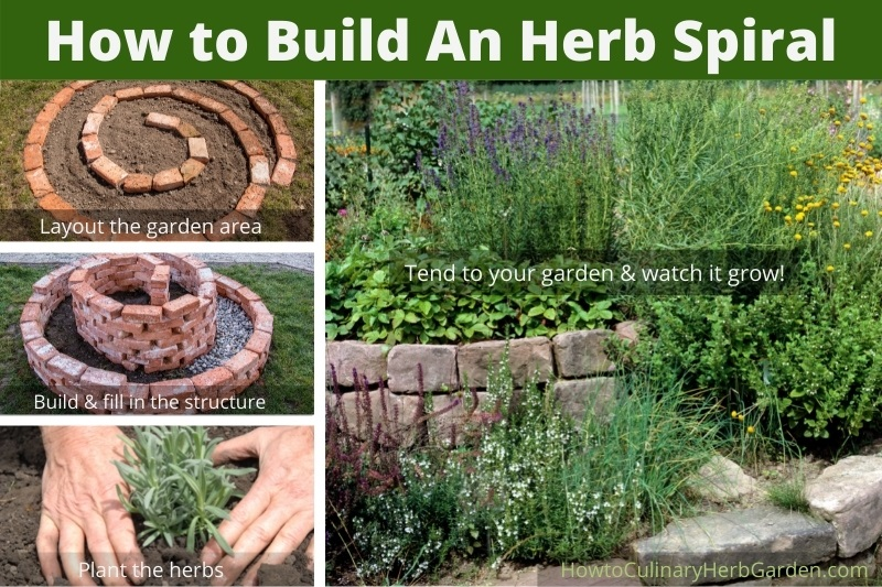Collage showing the steps to build an herb spiral - Laying out the structure and planting the herbs