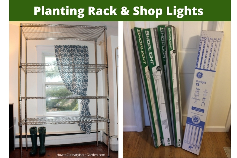 Full size seed starting rack, shop lights and T8 grow light bulbs