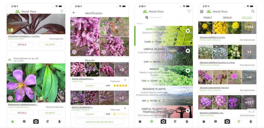 plantdotnet identification app for your phone or ipad