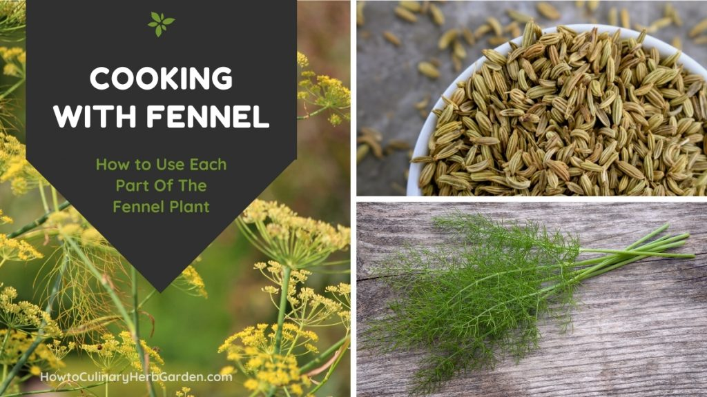 Collage of cooking with Fennel showing blooms and pollen, seeds and fennel fronds