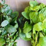 closeup of peppermint and spearmint leaves