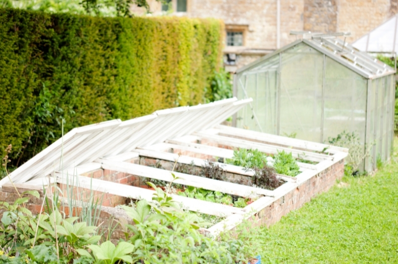 2 types of greenhouses - cold frame & freestanding