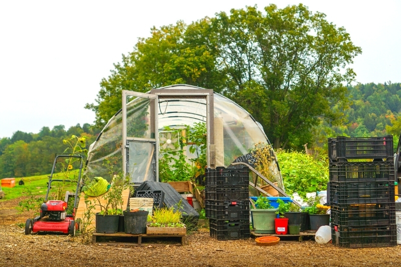 hoop house covered by polyfilm